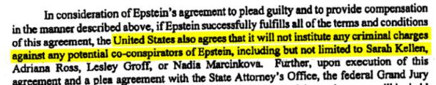 Screenshot_2019-08-12 EXCLUSIVE Epstein Flights, Photos,Who Fought Case Unseal Mar-a-Lago Ban -(5)