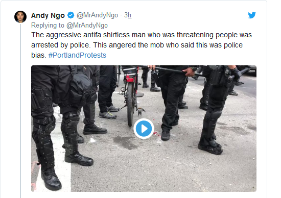 Screenshot_2019-08-17 'Anarchy and Chaos' Violent Antifa Protests Break Out in Portland(7)