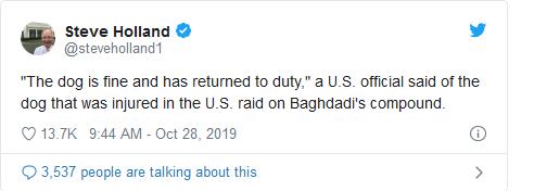 Screenshot_2019-10-28 Military Dog Hurt in al-Baghdadi Raid Returns to Duty(1)