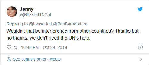 Screenshot_2019-10-30 Dem Rep 'personally' asks UN to intervene in 2020 election, wants monitors from 'all over the world'(7)