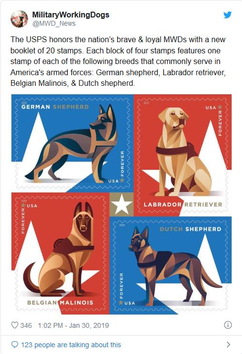 Screenshot_2019-10-31 Trump identifies 'Conan,' military dog in Baghdadi raid, says she will visit White House(1)